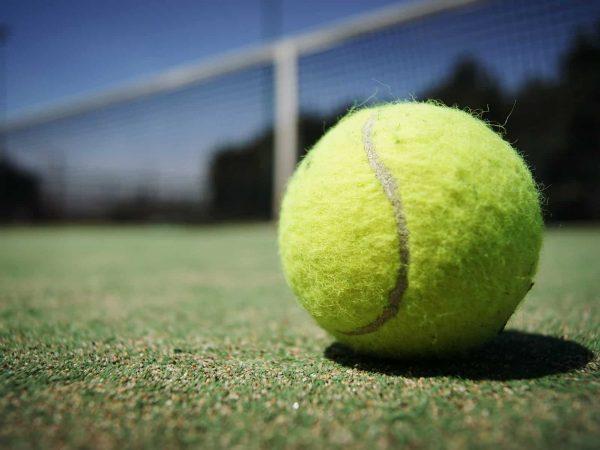 Tennisball: Test & Empfehlungen (01/20)