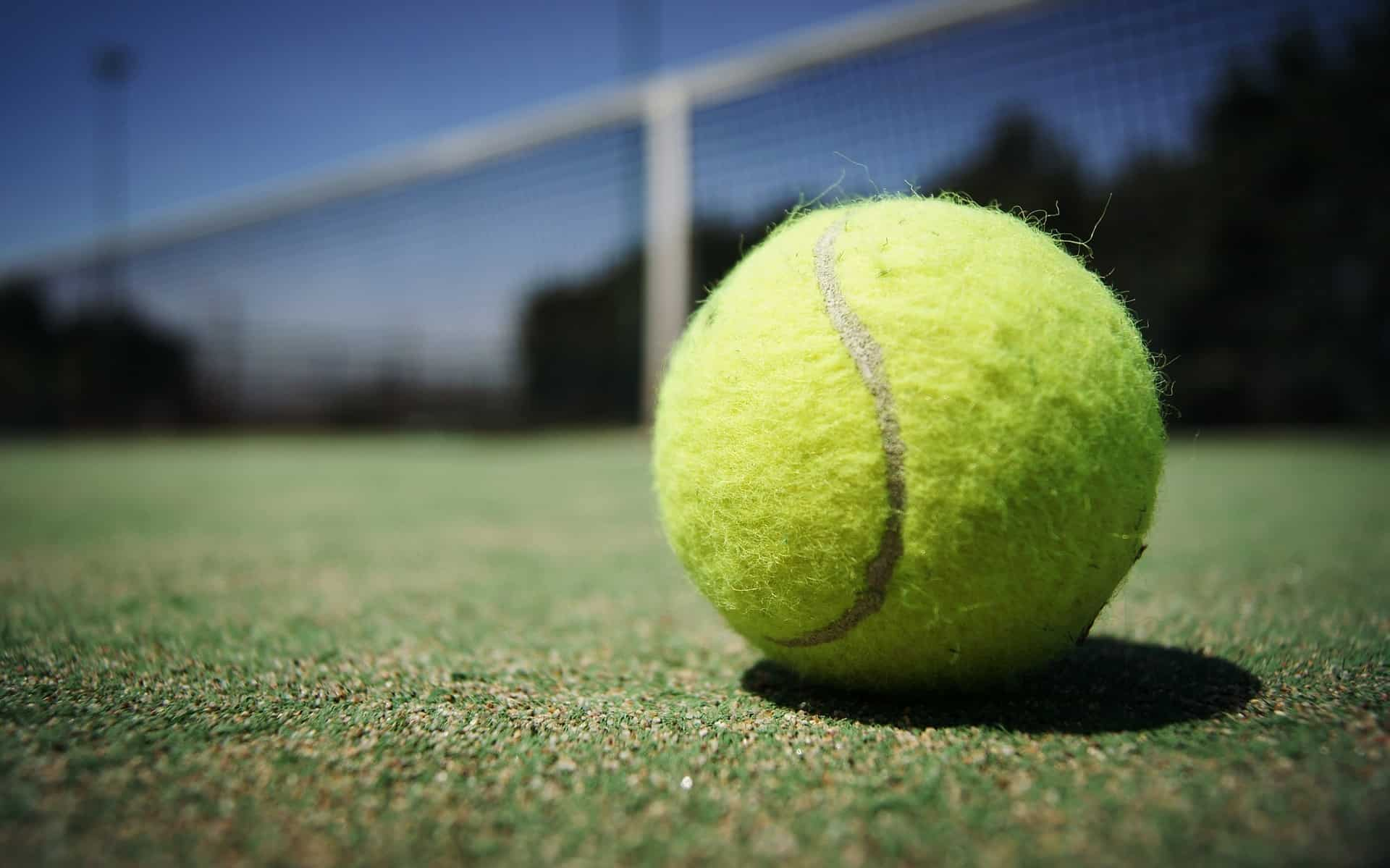 Tennisball: Test & Empfehlungen (08/20)